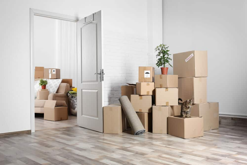 Top Tips for Moving House